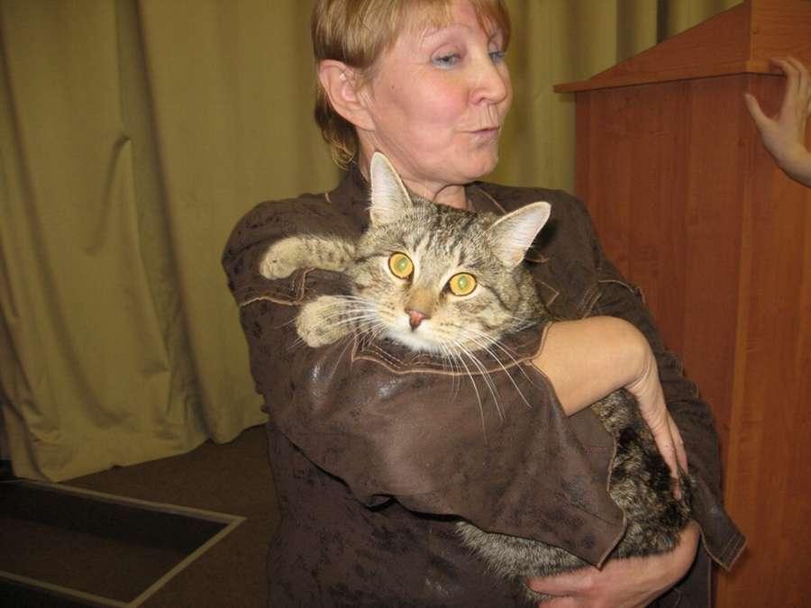 В Кунгуре кот Вася спас жильцов дома на пожаре - фото 1