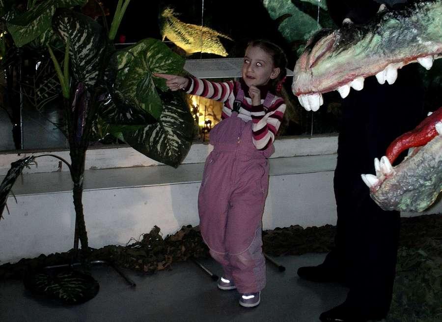 Пермяки узнали, как приручить дракона - фото 4