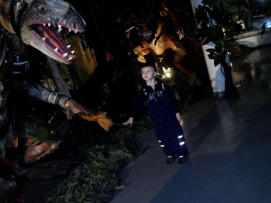 Пермяки узнали, как приручить дракона - фото 6