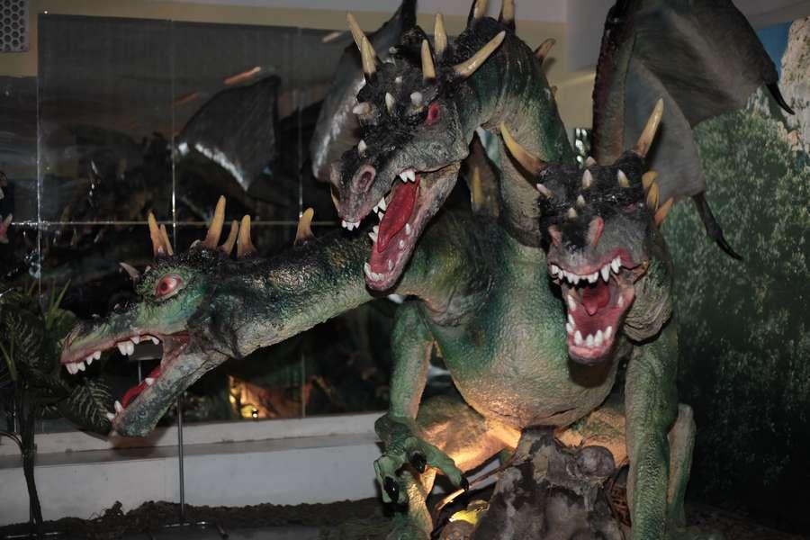 Пермяки узнали, как приручить дракона - фото 8