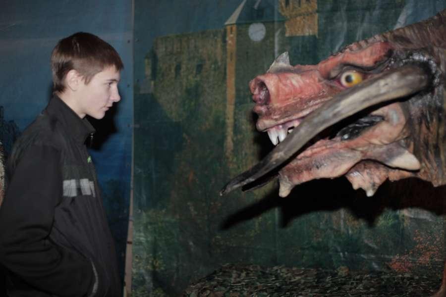Пермяки узнали, как приручить дракона - фото 11