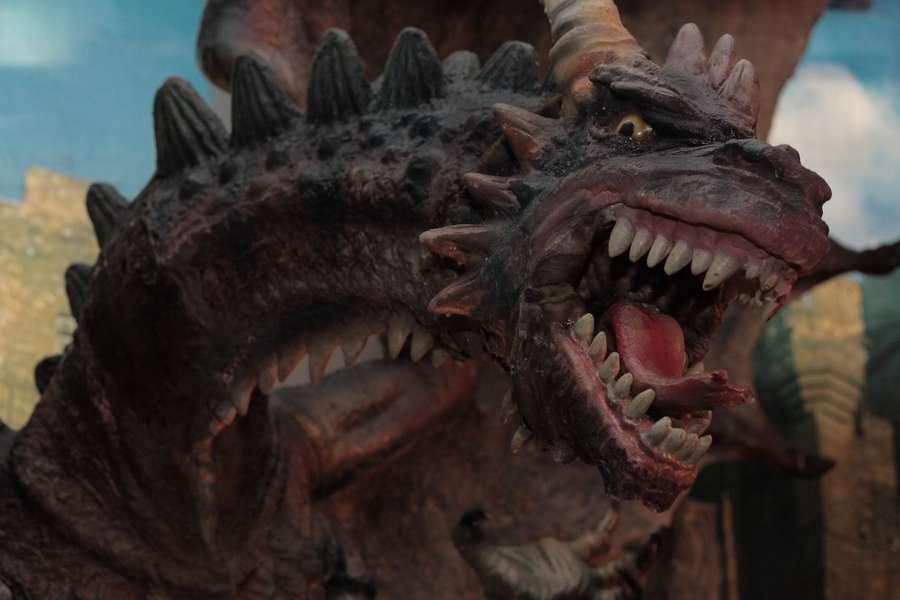 Пермяки узнали, как приручить дракона - фото 12