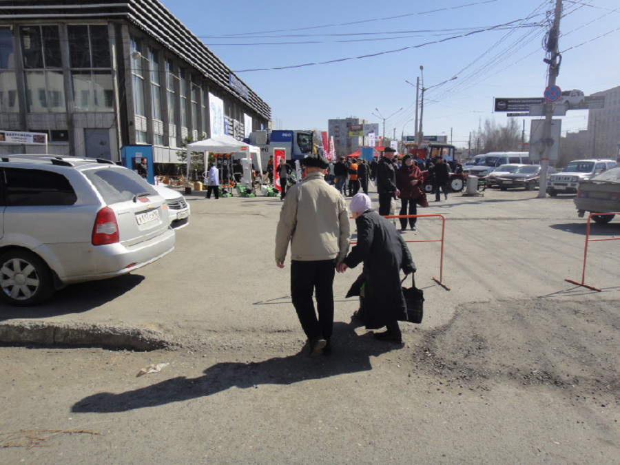 Садоводы и огородники Перми собрались в одном месте - фото 25