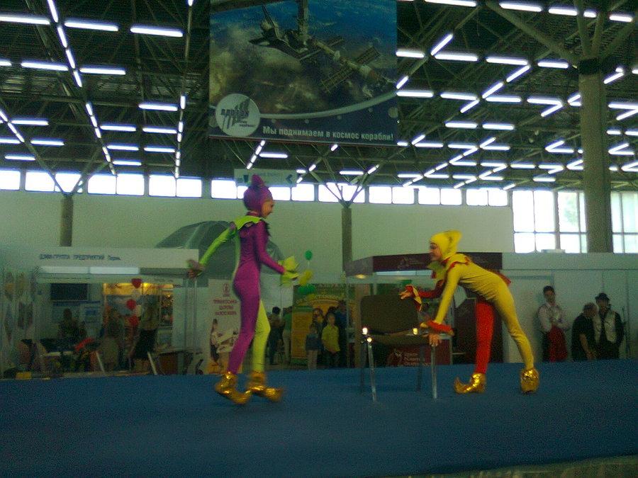 В Перми на выставке самым веселым был живой ежик