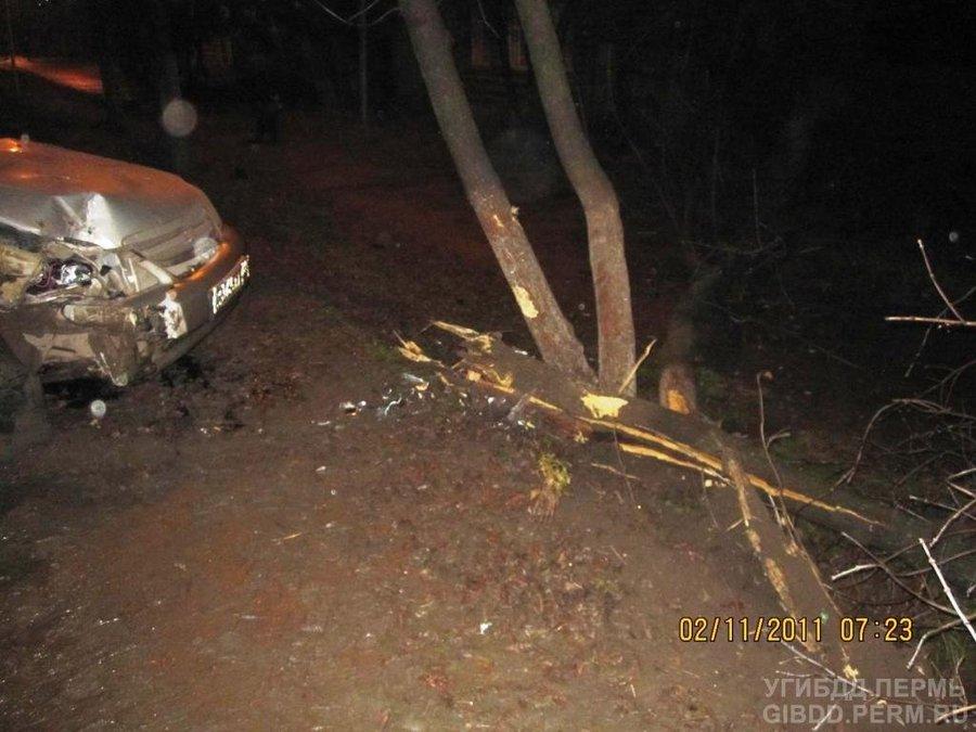 В Пермском крае в автоаварии пострадала 7-летняя девочка