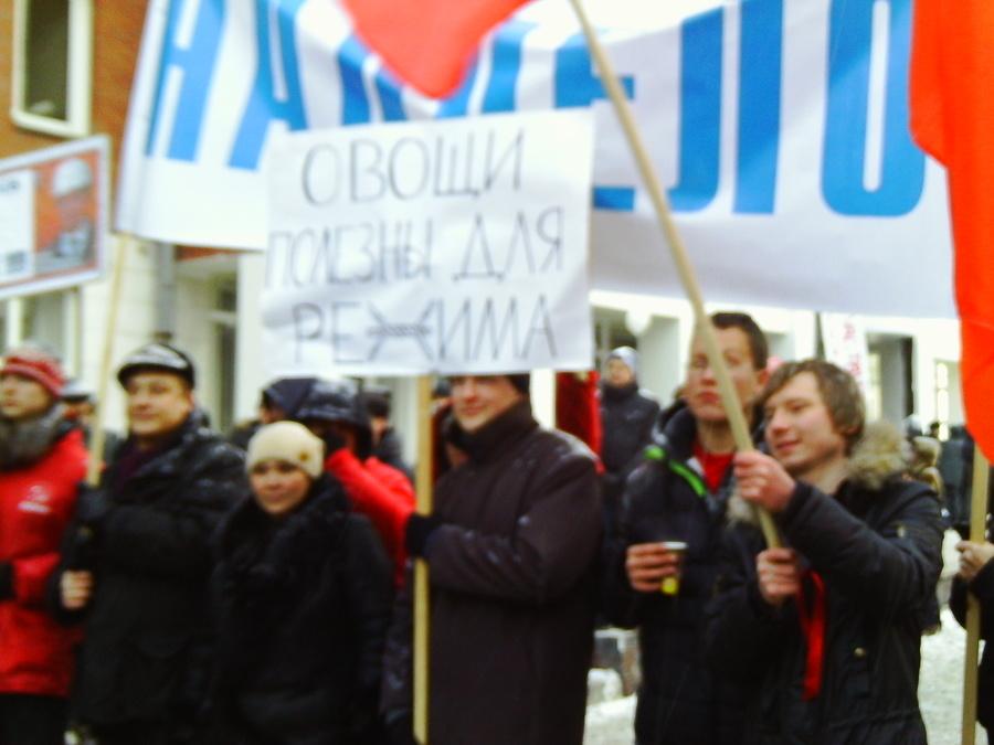 Митинг «За честные выборы». Серия вторая - фото 5