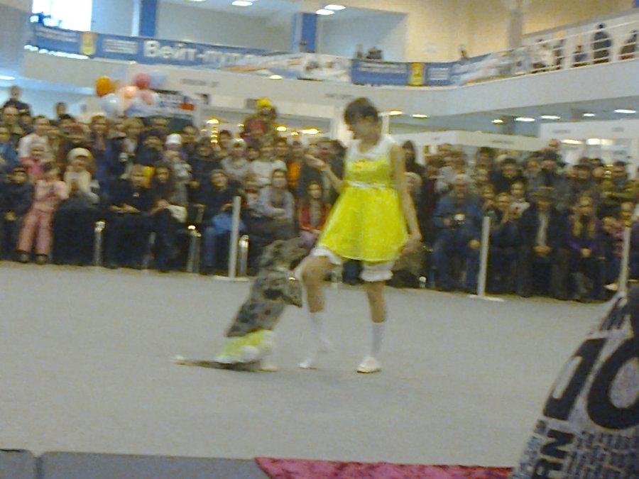В Перми показали танцующих собачек - фото 3