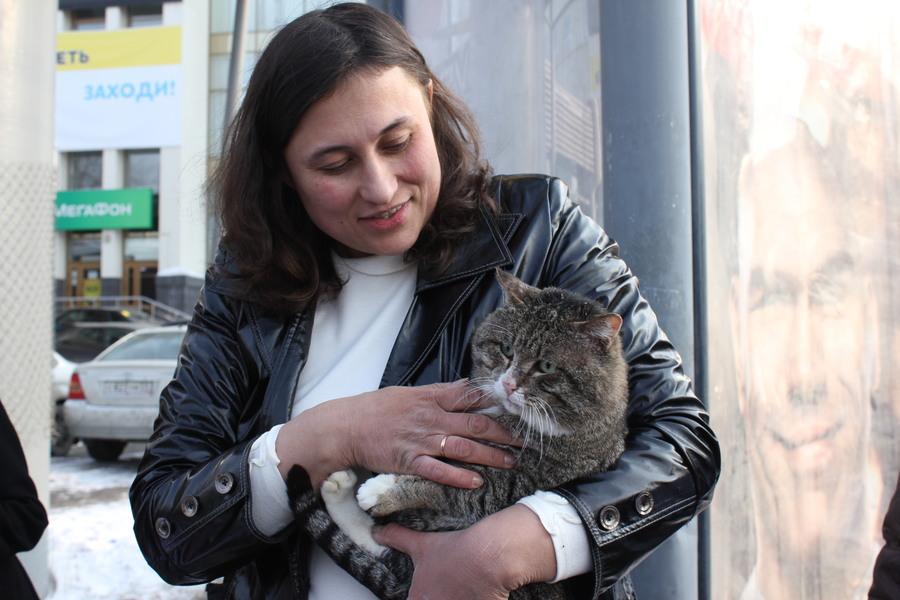 Животные пермского приюта ищут счастье