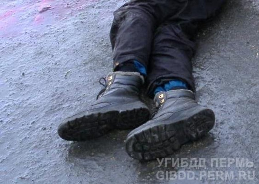 В Кунгурском районе под колеса «девятки» попали двое мужчин - фото 1