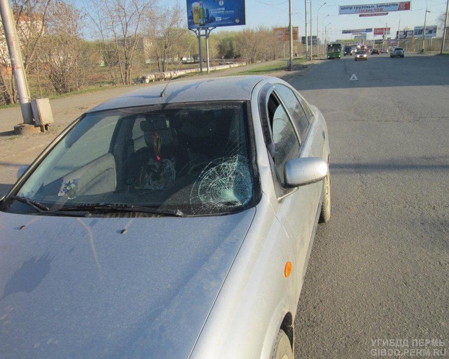 В Перми Ниссан сбил молодого человека - фото 1