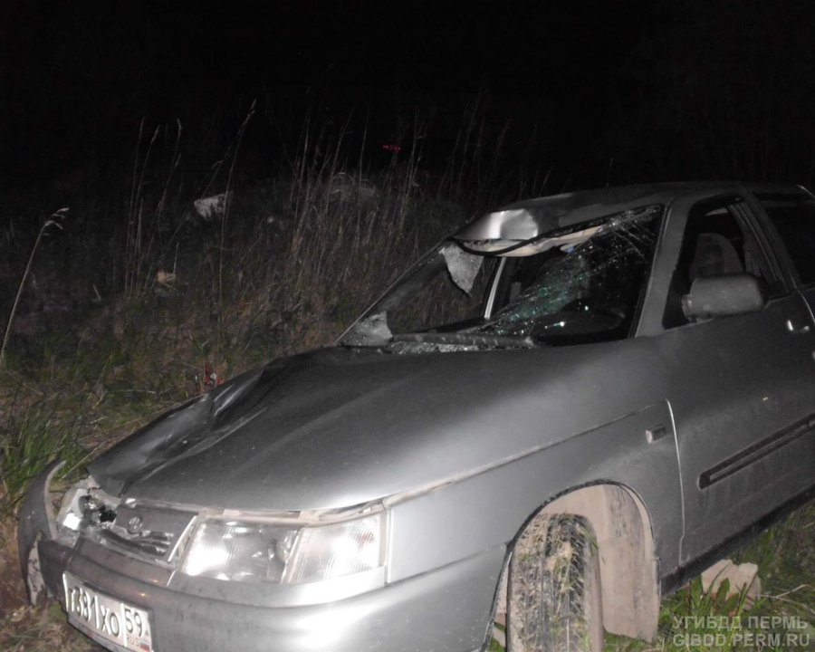 В Березниках водитель ВАЗа сбил двух пешеходов