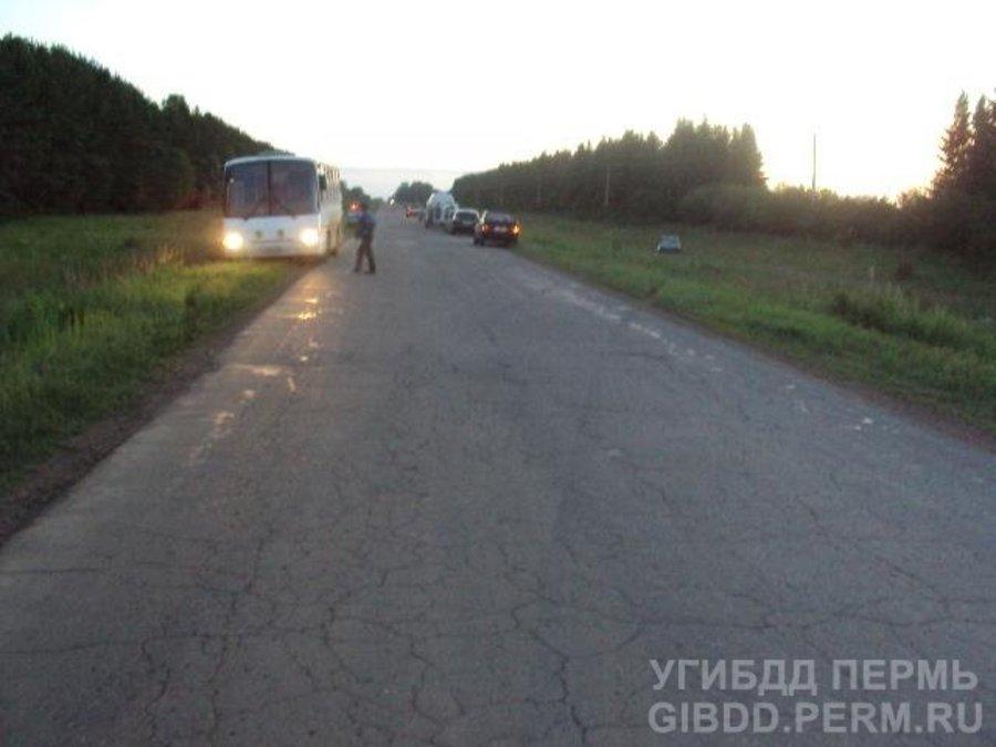 В Куединском районе жертвой погибшего водителя ВАЗа стал его пассажир - фото 1