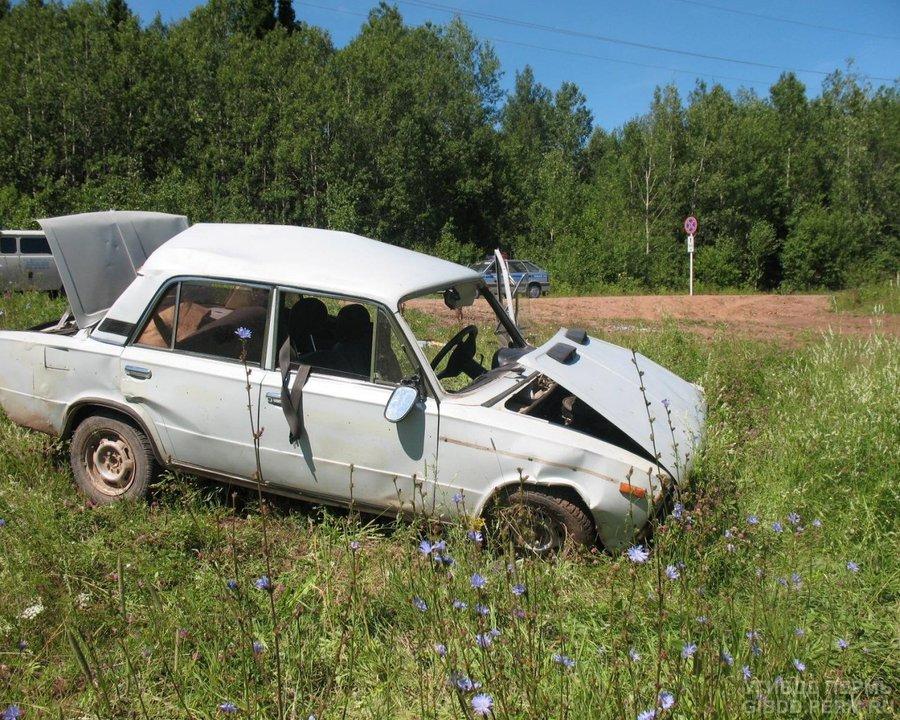 В ДТП в Пермском районе ранены двое взрослых и двое детей - фото 1