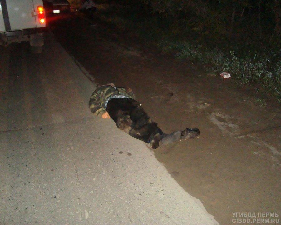 В Краснокамске пьяный водитель убил пешехода