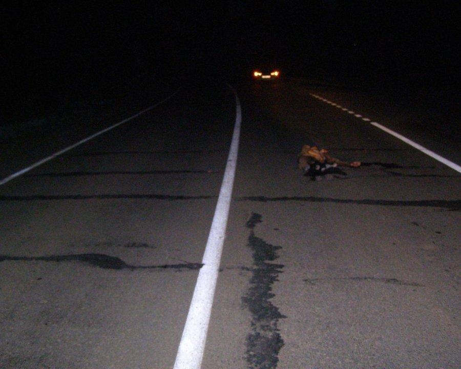 В Нытвенском районе на дороге погиб пешеход