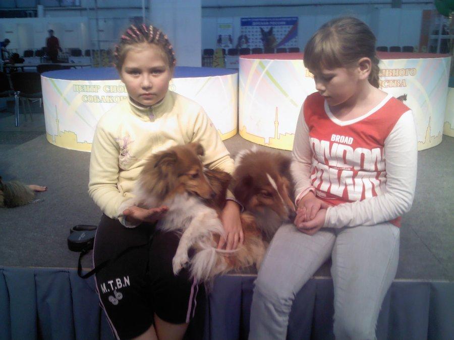 В Перми собаки все больше удивляют детей и взрослых