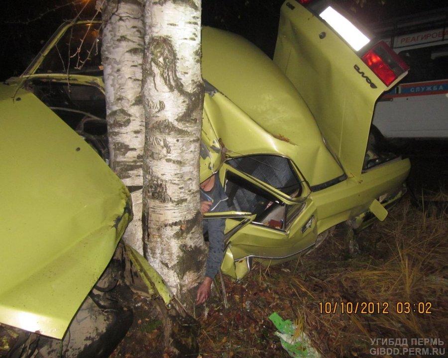 В Перми водитель Волги врезался в дерево и погиб