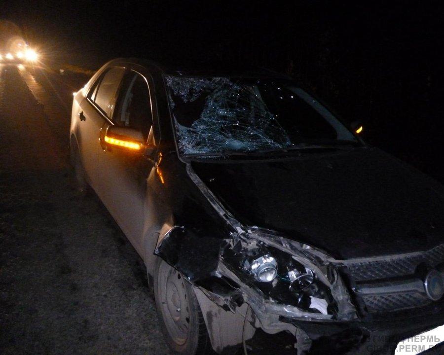 В Пермском районе погиб перебегавший дорогу мужчина