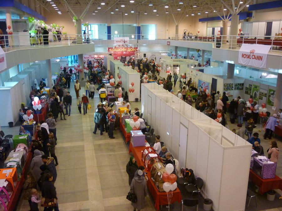 Пермская ярмарка отдана пушистым участникам выставки - фото 4