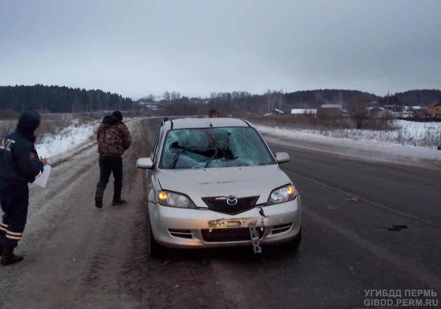 В Карагайском районе пешеход попал под Мазду и скончался - фото 1