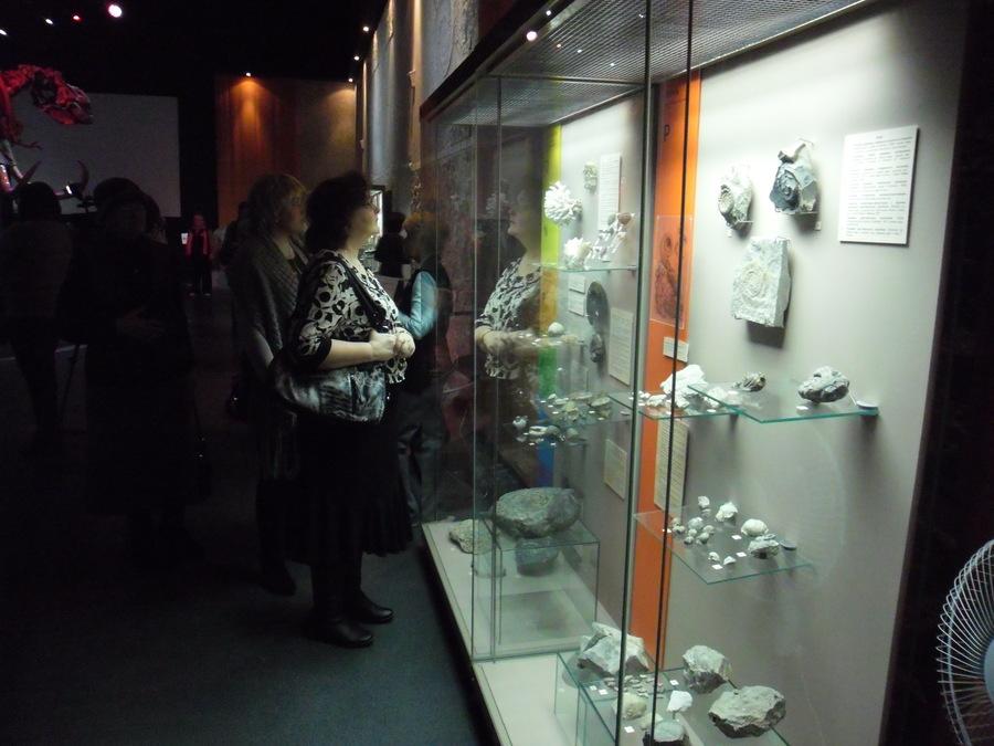 В Музее пермских древностей открылась новая выставка - фото 1