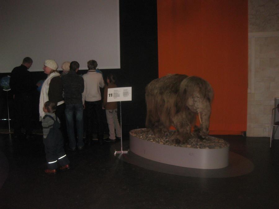 Музей Пермских древностей открыл для детей пугающую выставку