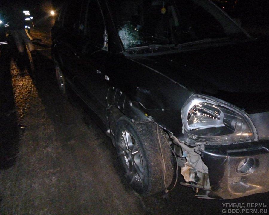 В Пермском районе под колесами погиб неизвестный - фото 1