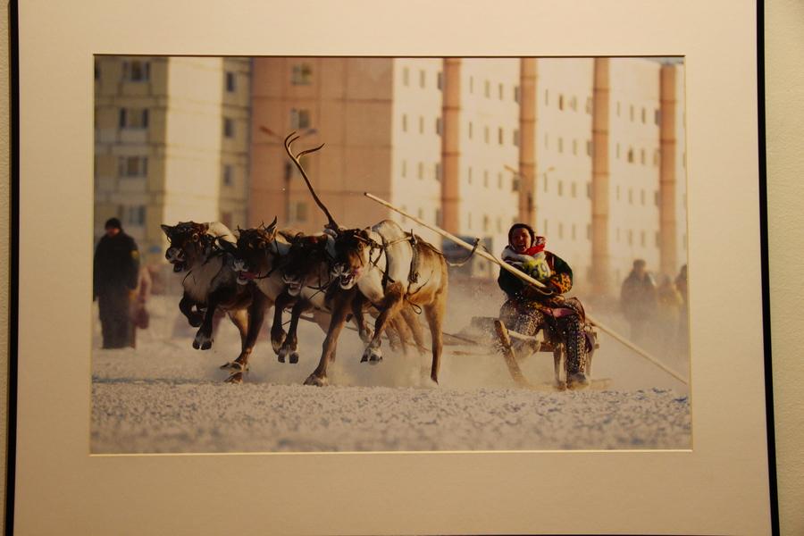 Фотопересказ 2012 года в музее PERMM - фото 17