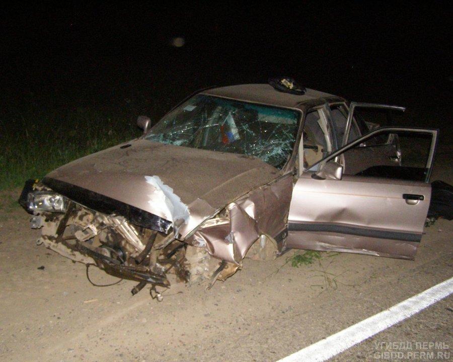 В Чернушинском районе погиб водитель Ауди - фото 1