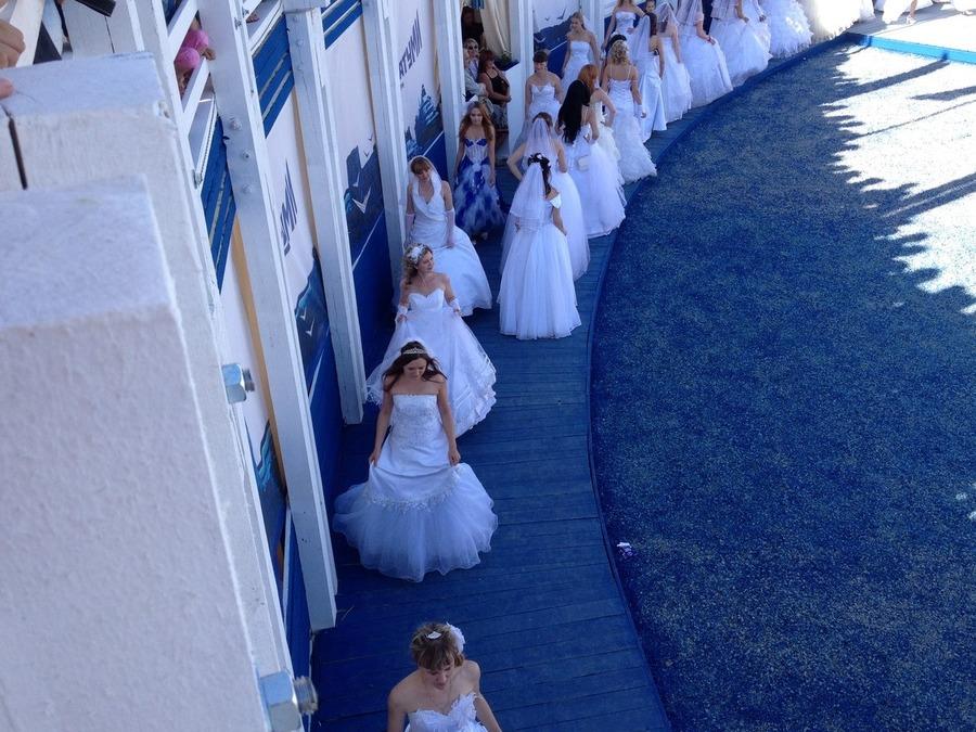 Триумф невест на Белых Ночах - фото 1