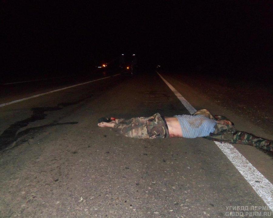 В Верещагинском районе на автодороге погиб пешеход