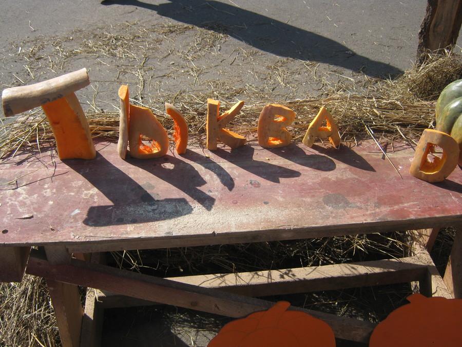 В Перми в парке имени Горького строят ТыкваCity - фото 1