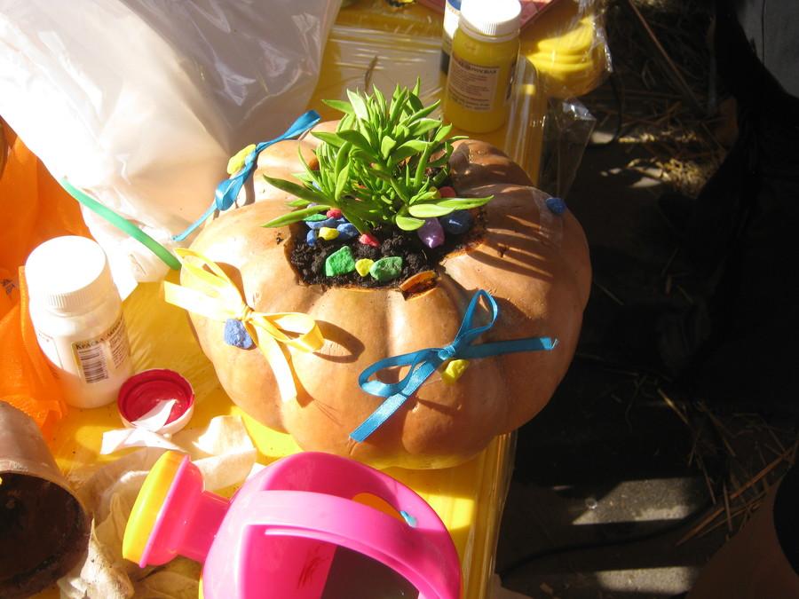 В Пермском парке имени Горького делают тыквенные вазы