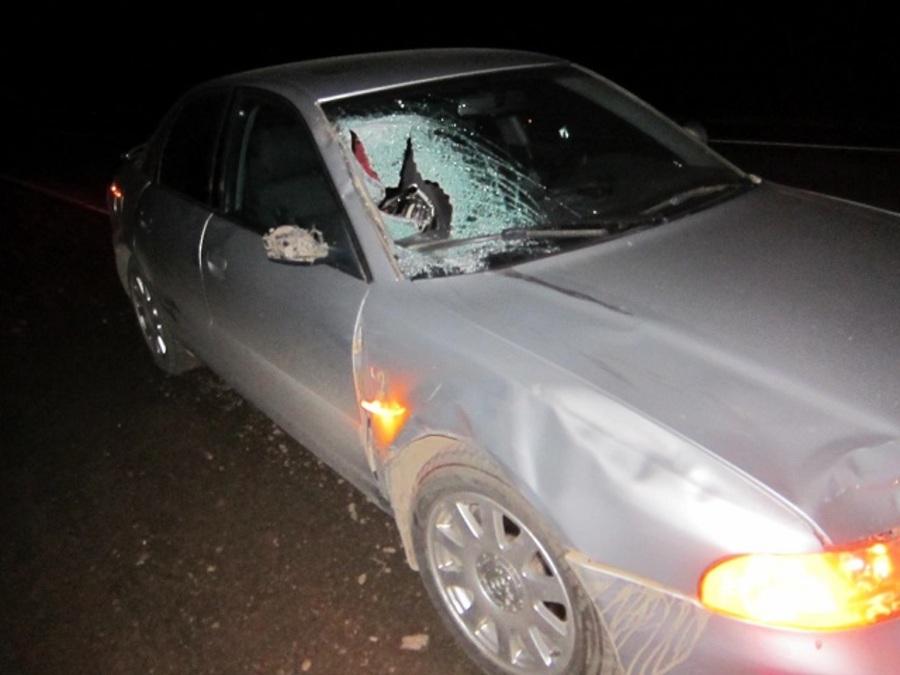 В Большесосновском районе под колесами Ауди погиб пешеход