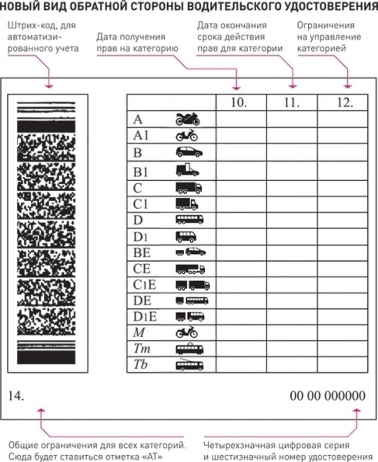 В России изменяется внешний вид водительских удостоверений - фото 1