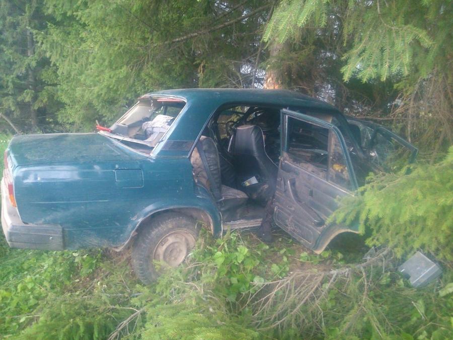 В Гайнском районе «пятерка» врезалась в дерево, водитель погиб