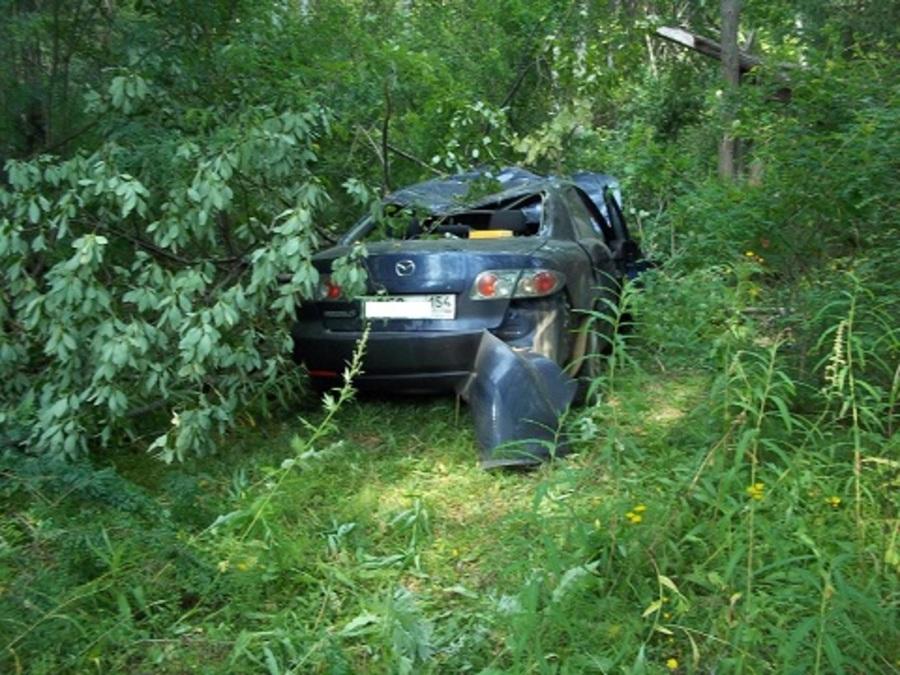 В Карагайском районе водитель Мазды сбил лося - фото 1