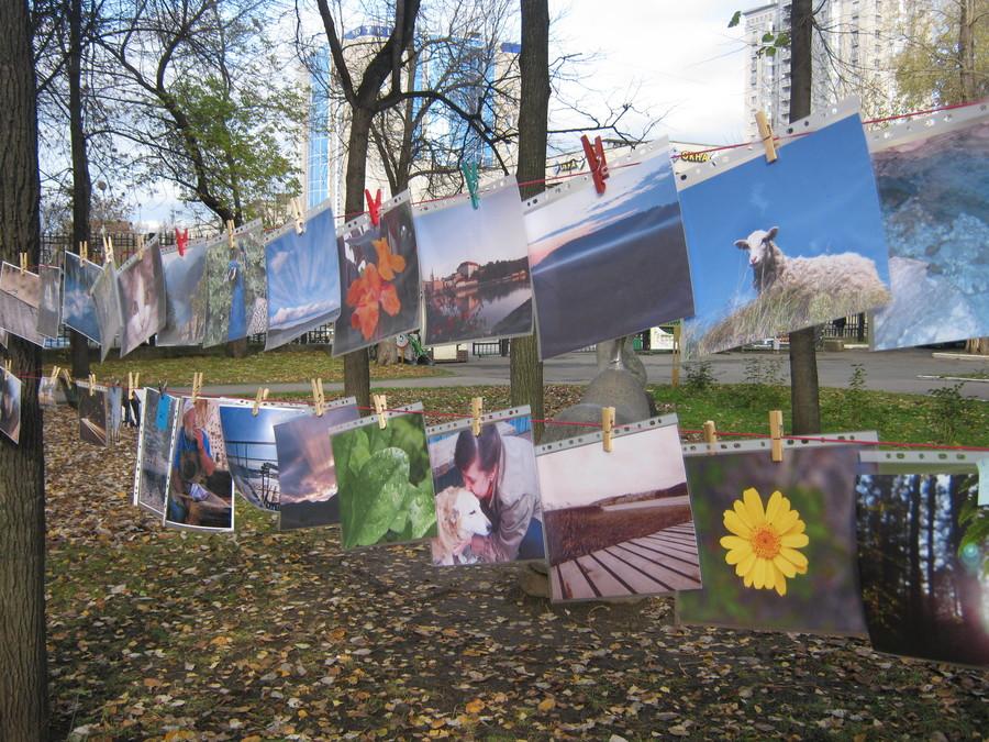В пермском парке имени Горького сушили фотографии