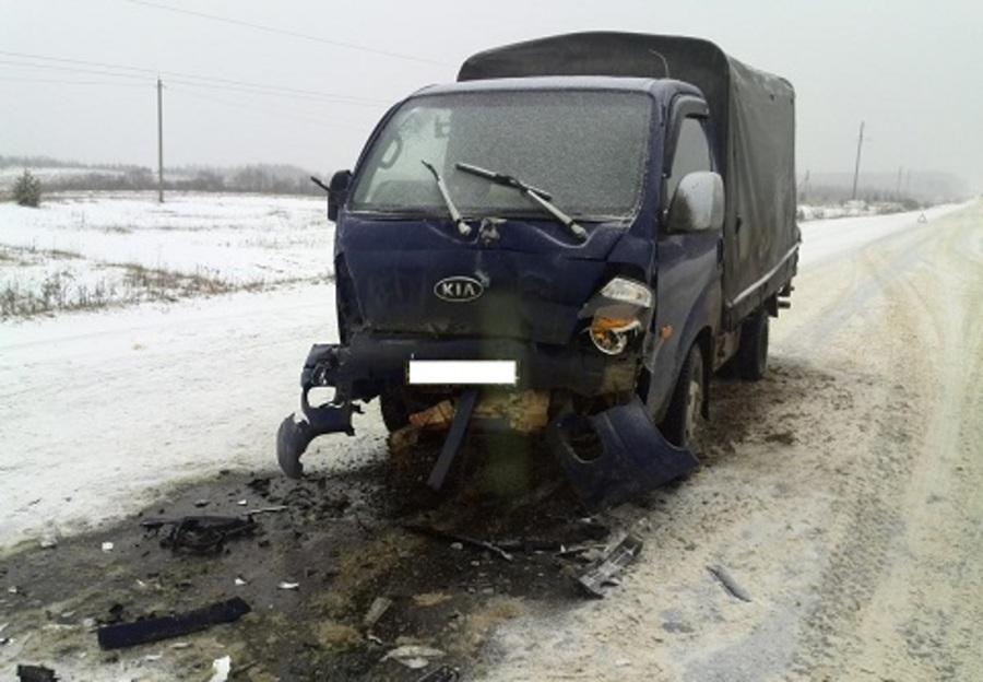 В Пермском крае на трассе Нытва — Кудымкар погибла водитель Опеля - фото 1