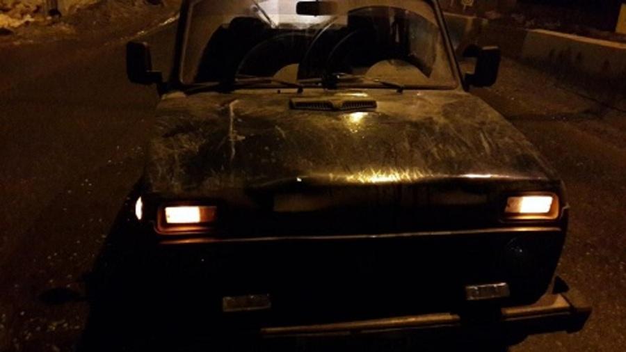 В Пермском районе водитель Нивы сбил трех пешеходов на переходе