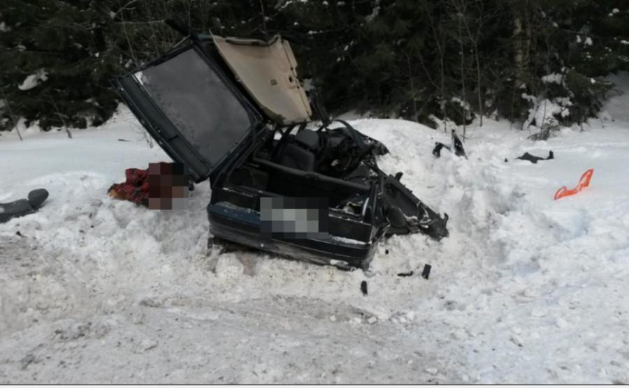 В ДТП на трассе Пермь — Екатеринбург два человека убиты, ранены мальчик и женщина - фото 1