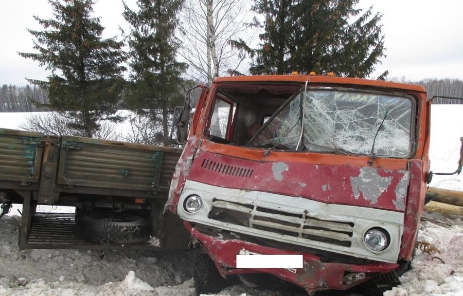 В ДТП в Нытвенском районе погибли два человека - фото 1