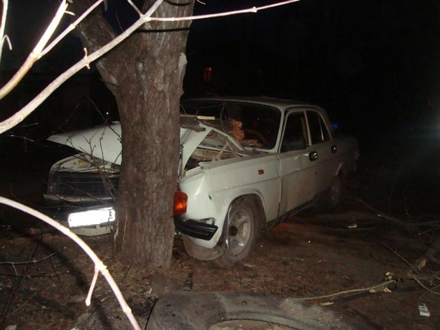 В Перми в столкновении Волги с деревом травмирован 10-летний мальчик