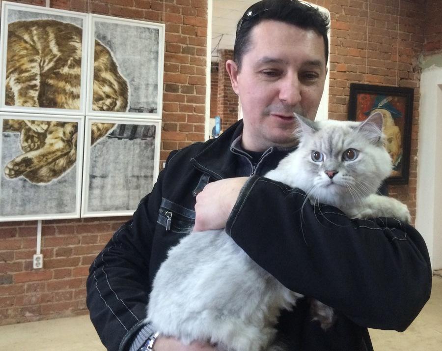 Кошачий Эрмитаж в Перми - фото 5