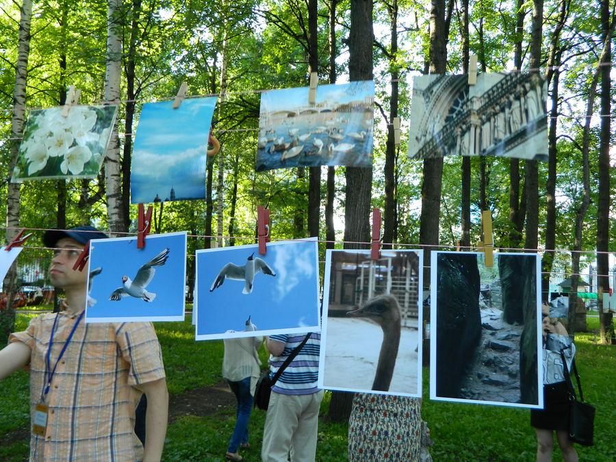 В Перми сегодня сушили фотографии - фото 19