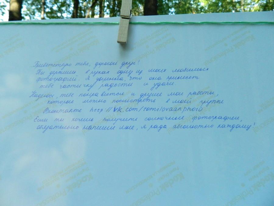 В Перми сегодня сушили фотографии - фото 25