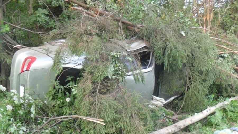 В Пермском районе Тойота Камри врезалась в дерево, погиб 17-летний водитель - фото 1