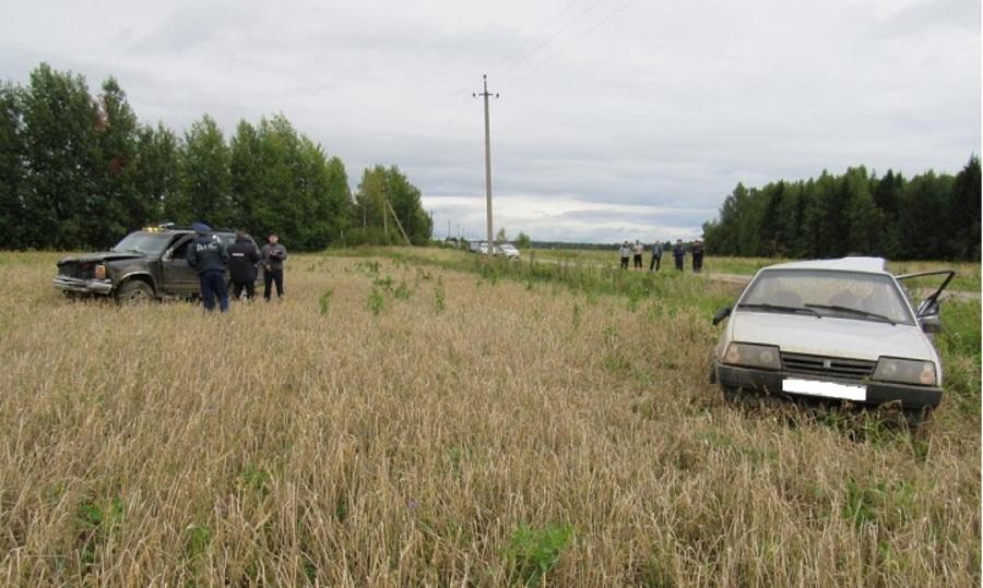В Пермском крае пьяный водитель Форда совершил ДТП со смертельным исходом - фото 1
