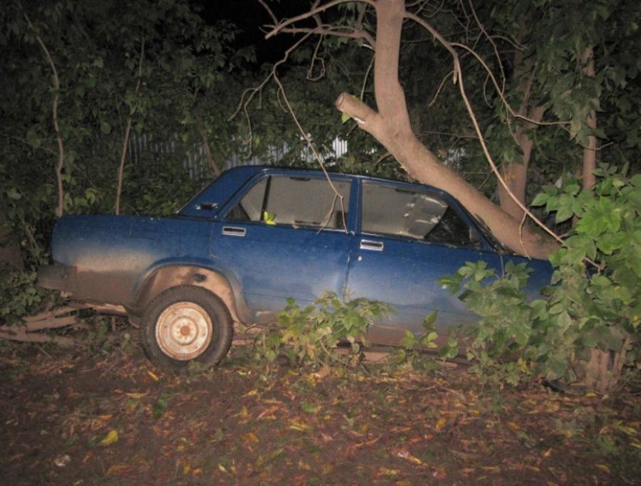 В Нытвенском районе угонщик «семерки» врезался в дерево