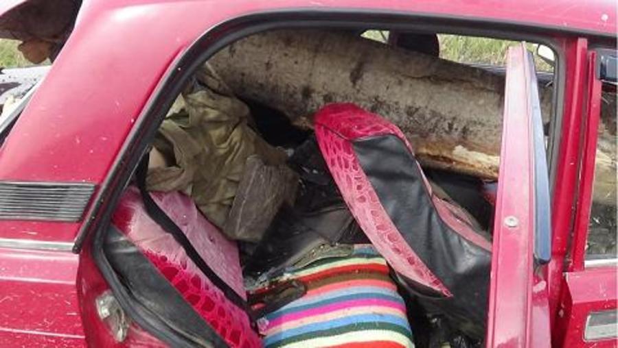 В Октябрьском районе автомобиль проткнуло насквозь стволом дерева - фото 2